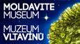 Muzeum Vltavínů - Moldavite museum